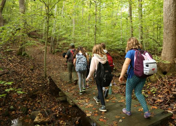Students hiking through Prince William Forest Park on a NatureBridge school program