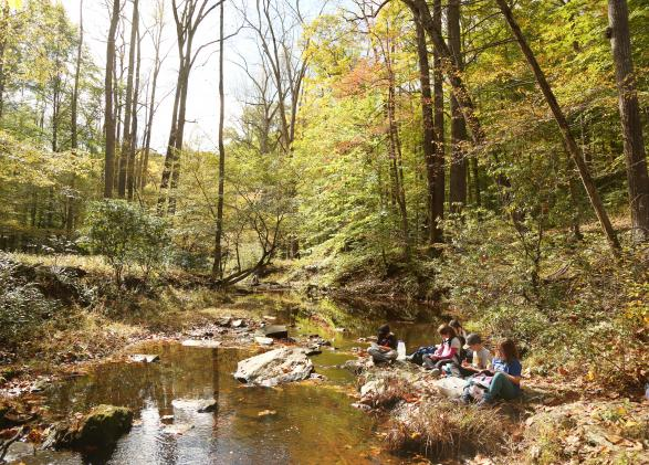 Students conduct a science investigation on the shores of Quantico Creek in Prince William Forest