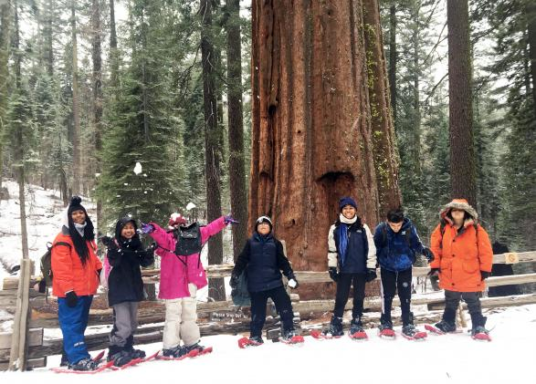 seven students snowshoeing pose in front of sequoia tree