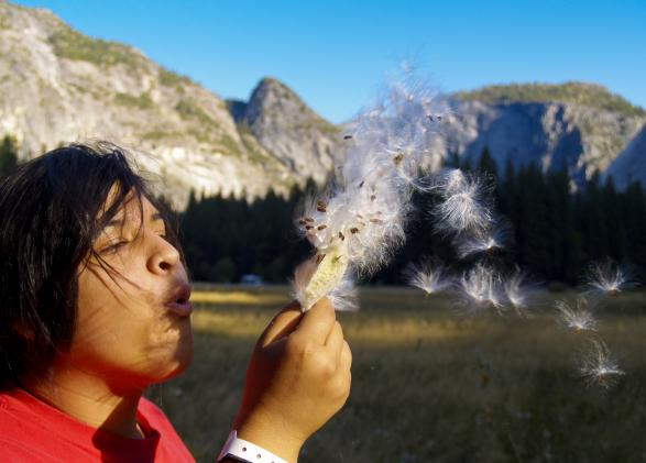 WildLink student at Yosemite National Park, NatureBridge