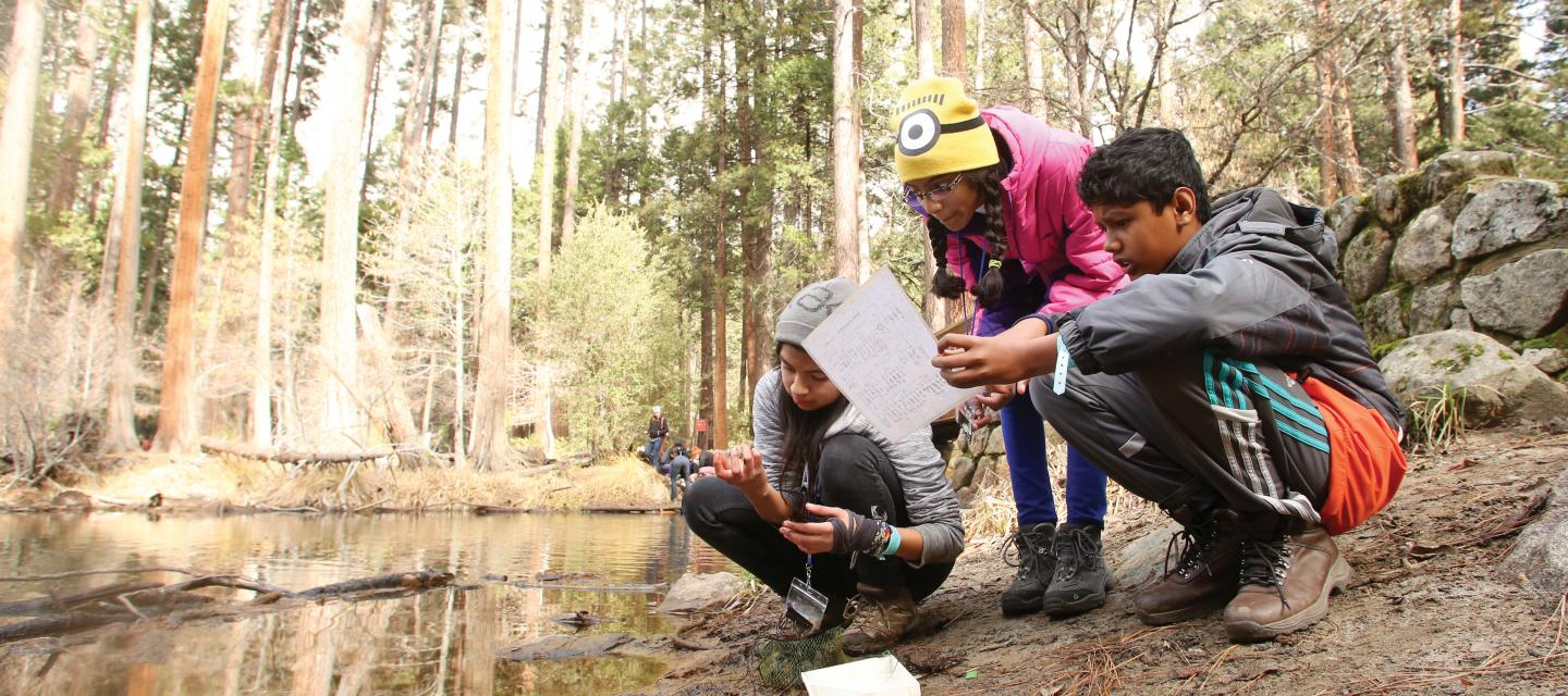 Students kneel by the Merced River in Yosemite National Park while doing a science investigation on water quality.