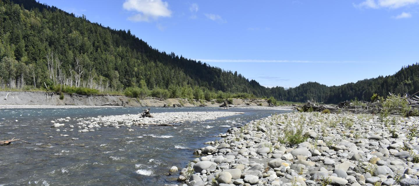 The Elwha River