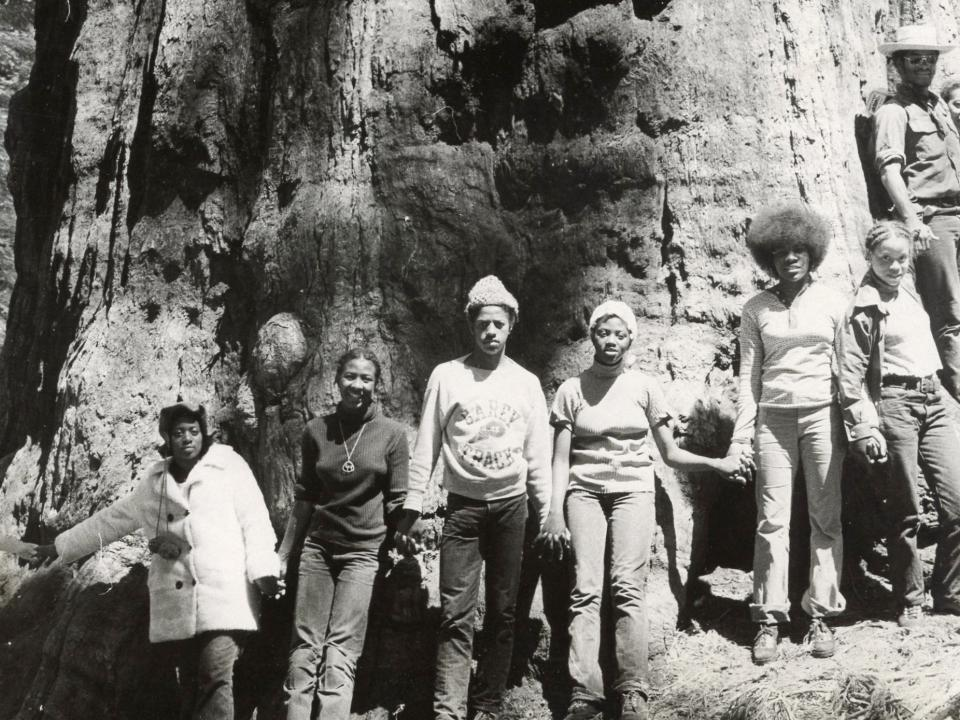 Students surround a giant sequoia in Yosemite National Park in 1971.