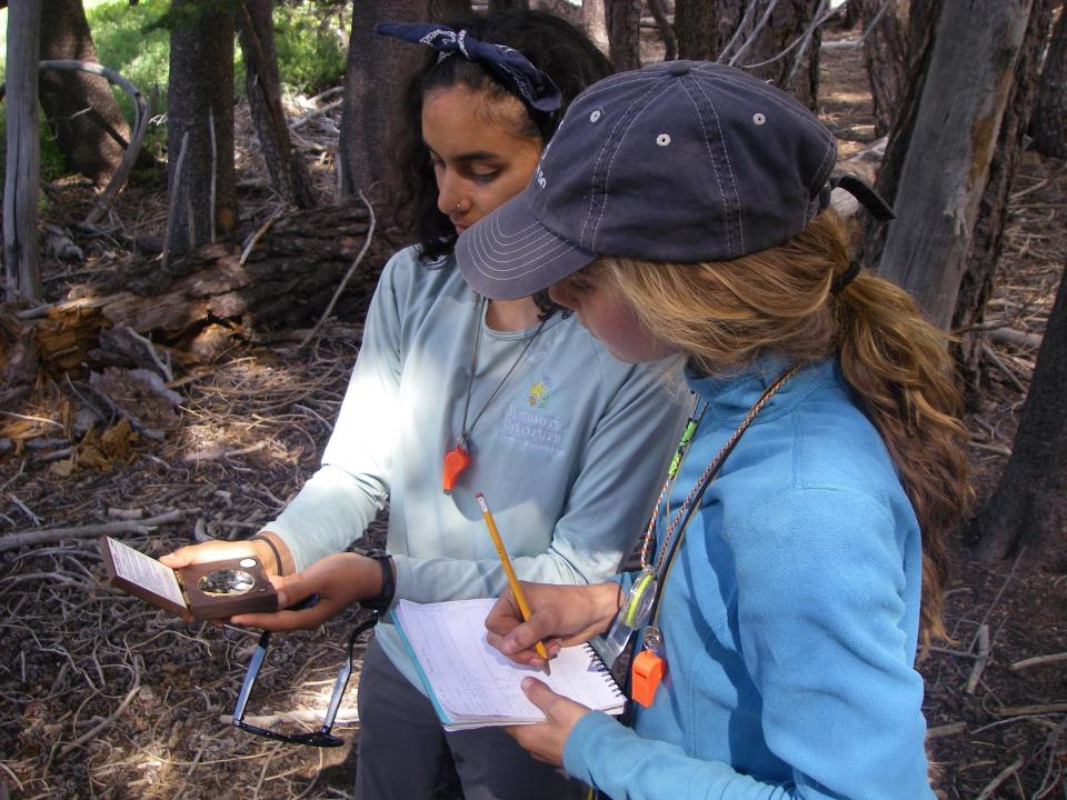 Educator shows student how to use a science tool that measures forest canopy.