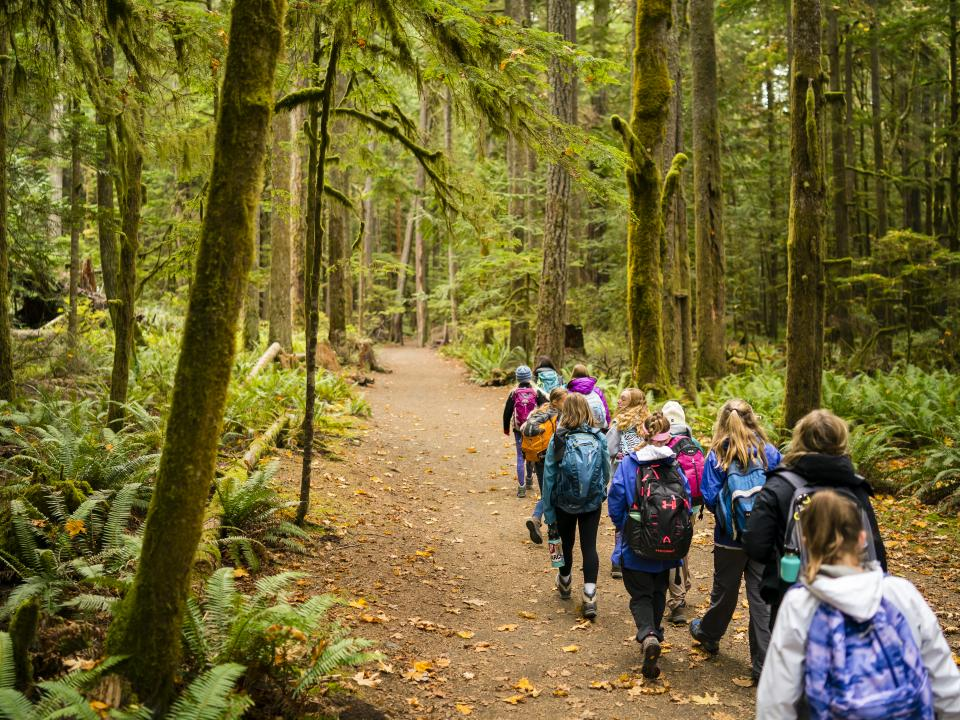 Students walking through the old growth forest in Olympic National Park